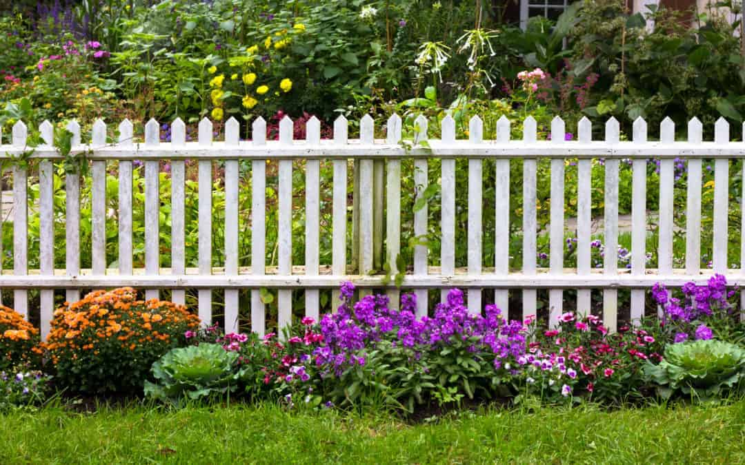 A white picket fence surrounded by and array of flowers