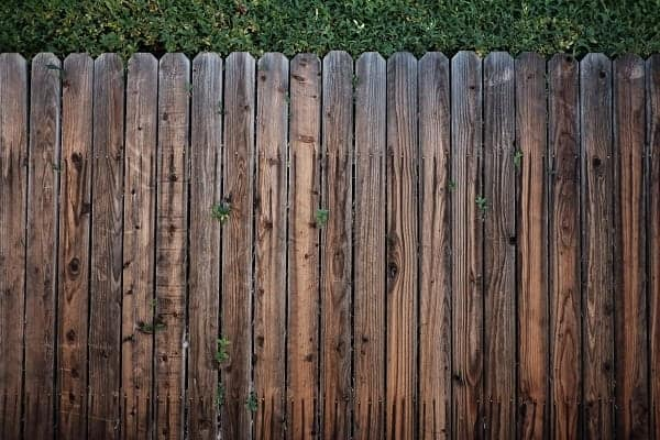 A stained and weathered wood fence lines a wall of shrubbery