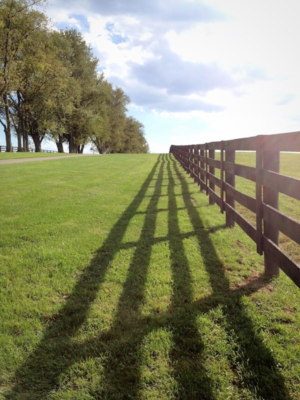 Around a Grand Prairie Ranch a long wood rail fence lays a shadow on the green grass
