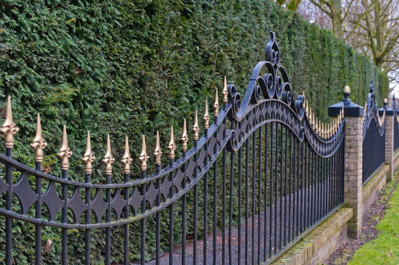 Black painted iron fence mounted at a small wall of brickstones before a conifer hedge seen in Trophy Club