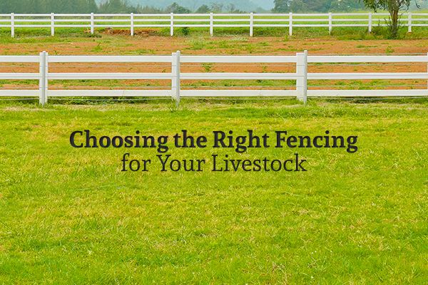 "A field of grass with a white fence and the words ""Choosing the Right Fencing for Your Livestock"""