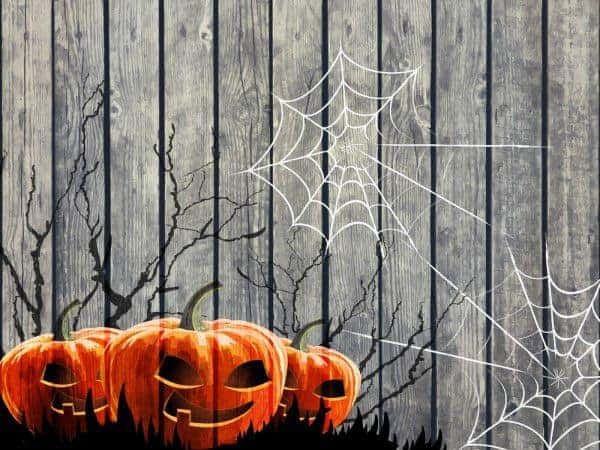 A wooden fence with jack-o-lantern cutouts and spiderweb cutouts stuck on